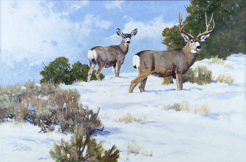 Jackson Hole Art Auction: Mule Deer