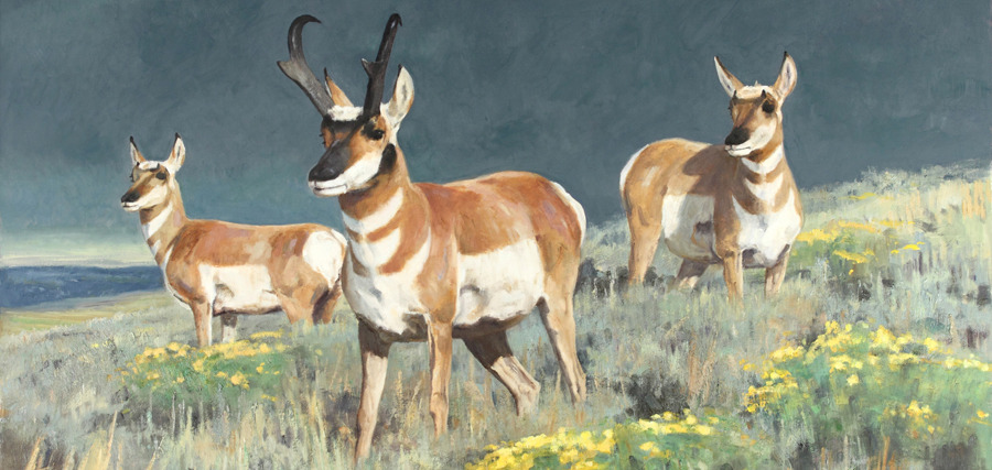 Celebrating excellence in contemporary western & wildlife art